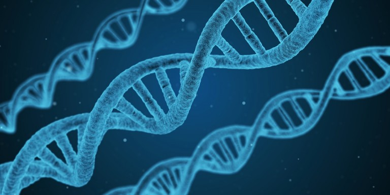 Feds Work to Stop Genetic Testing Scams